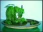 亚博体育下载苹果防真水